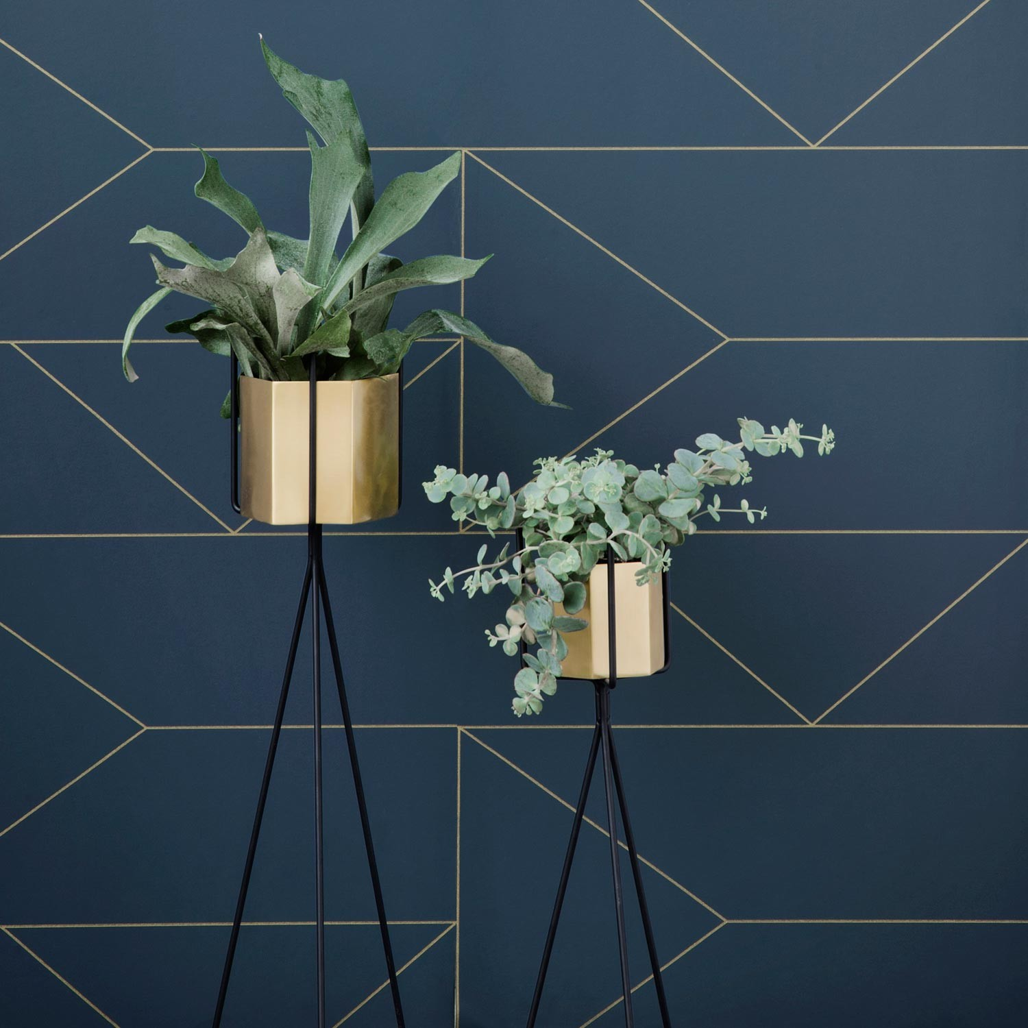 ferm living plant stand h he 65 cm pflanzenst nder schwarz ebay. Black Bedroom Furniture Sets. Home Design Ideas