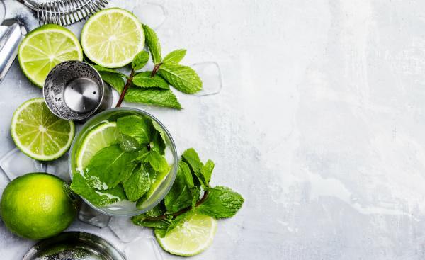 Mojito Cocktail mit Limette, Minze und Eis