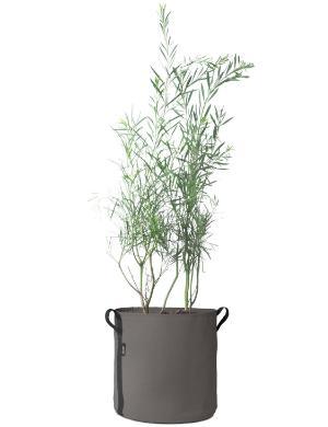 pflanztasche-pot-50-l-bacsac