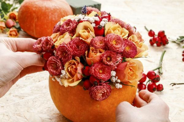 Typische Herbstblumen