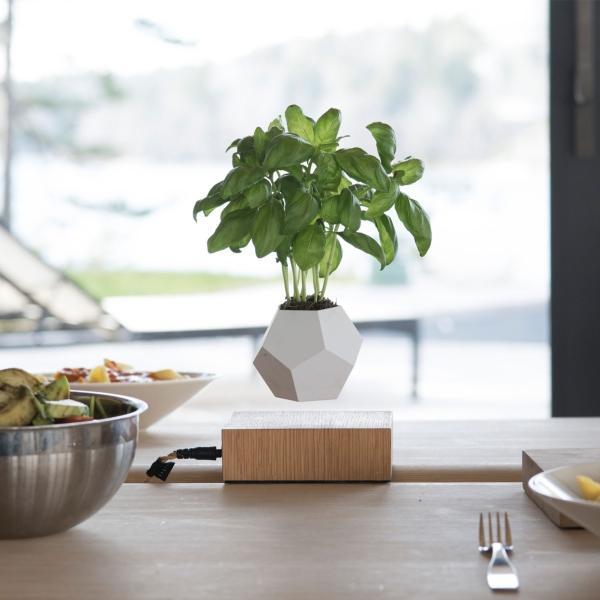 flyte-lyfe-schwebende-vase
