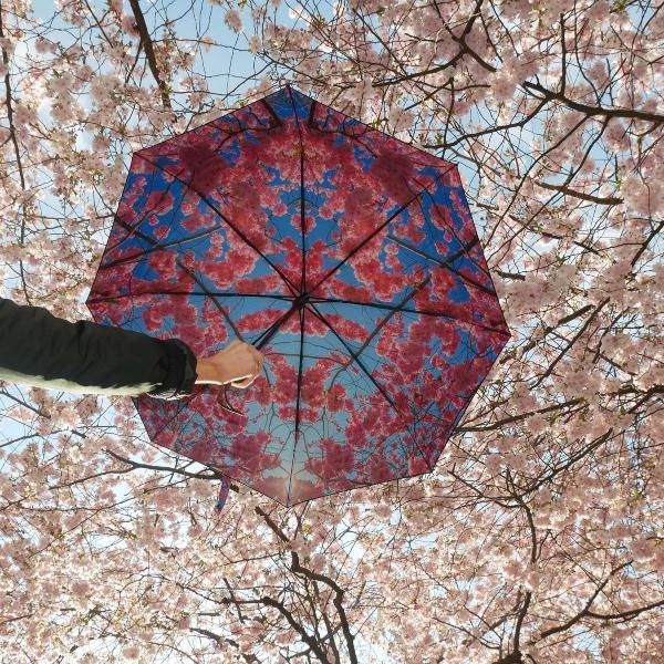 happysweeds-cherry-regenschirm-schoene-valentinsgeschenkideen