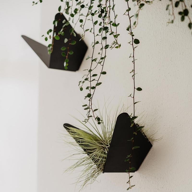 umage-butterflies-wandhaken