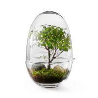 Design House Stockholm - Grow Clear Gewächshaus